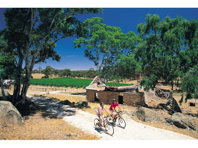 Cycling the Riesling Trail, Clare Valley, South Australia
