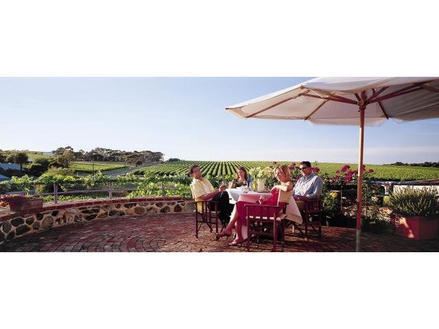 Wine Tasting in McLaren Vale, Fleurieu Peninsula, South Australia