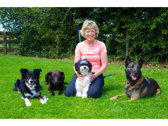 Joanne and her dogs