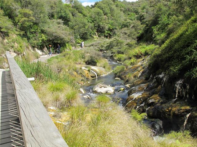 Families love Waimangu Volcanic Valley in Rotorua