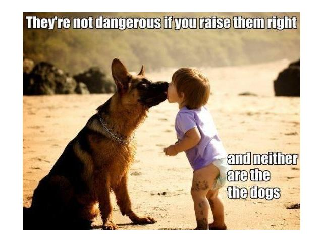 Love your pets... <3