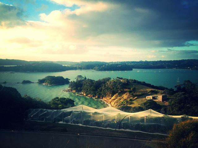Stunning view of Te whau vineyard