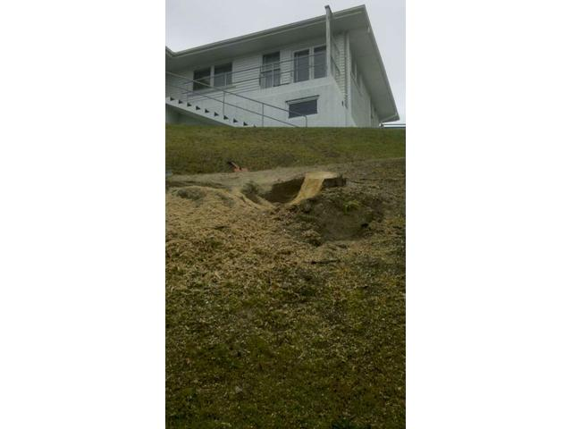 Stump on steep slope in Tauranga. Alpine Magnum only machine that could grind this stump.