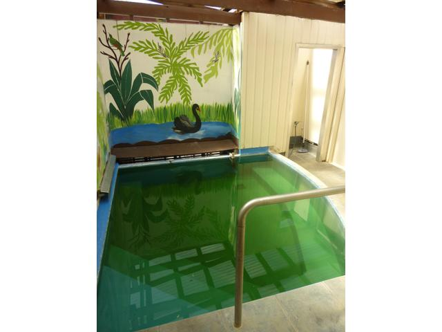 Genuine Thermal Mineral Pool