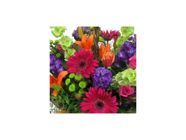 Bright colourful flowers from Best Blooms florist Auckland.