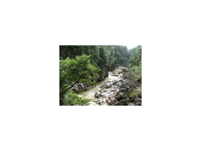 charming creek walk and cycleway right behind us