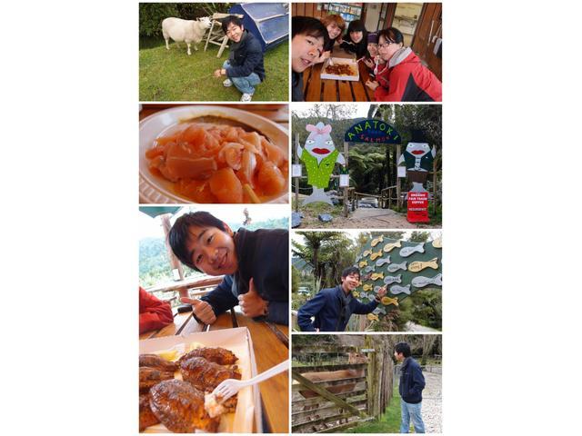 Catch Smoke Feast - Anatoki Salmon Farm