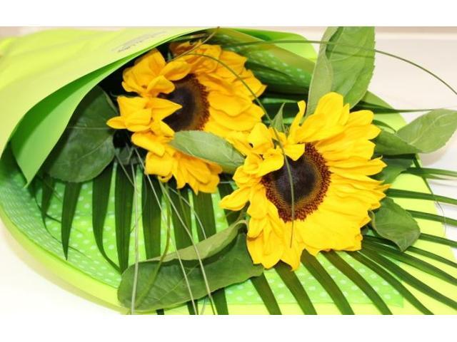 Sunflowers for Summer