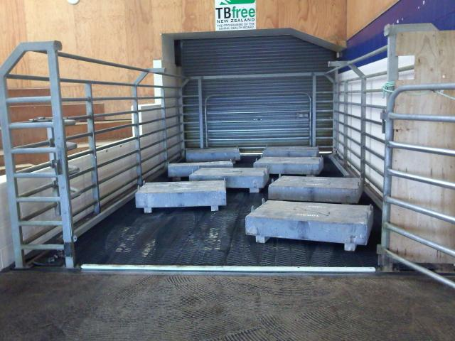 Salyard / Cattle Weighing Systems