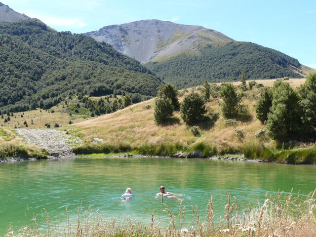 swim in a natural tarn in Mt Lyford