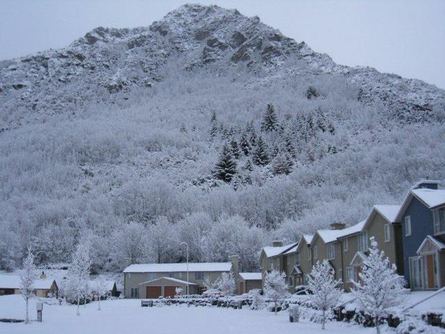Arrowtown Accommodation - Arrowfield Mews in winter