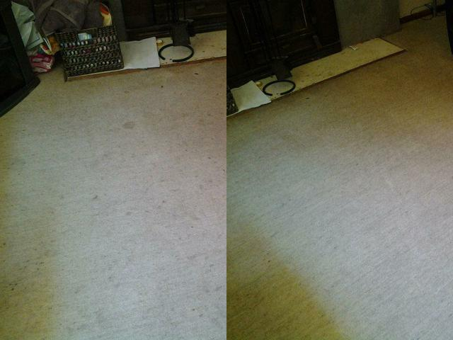 Want those marks in the carpet to disappear