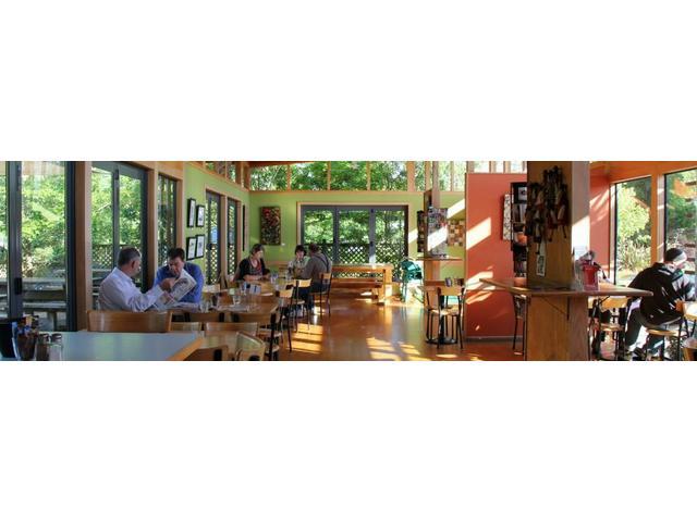 inside Bosco's