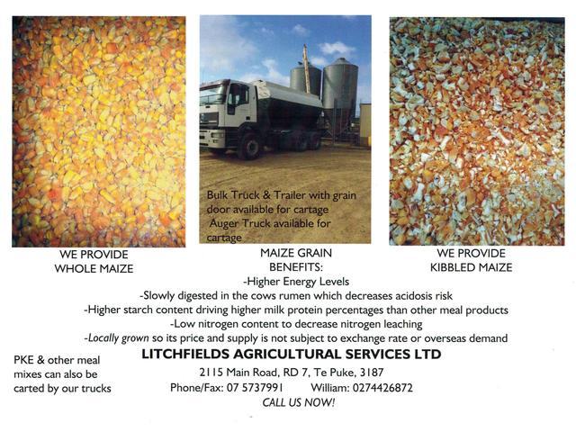 Maize Information