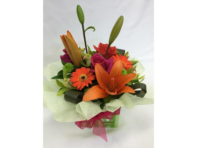 Brilliance (bright boxed posy $69 Standard or $129 Deluxe )
